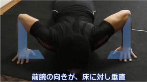 前腕の向きが、床に対し垂直!